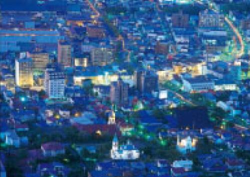 函館夜景ロマンコース(湯の川 バスコース)